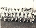 L-R, front row: T.R. Taylor, R. Sanchez, L. LaSalle, G. Matile, R. Sheetz, R. Boone, J. Falls, D. Kildoo. Back row: B. Phillips, F. Hale (trainer), O. Rodriguez, J. Monohan, M. Hoffman, R. Mejias, J. Paepke (manager), R. Babcock, E. Johnson, B. Chatham.